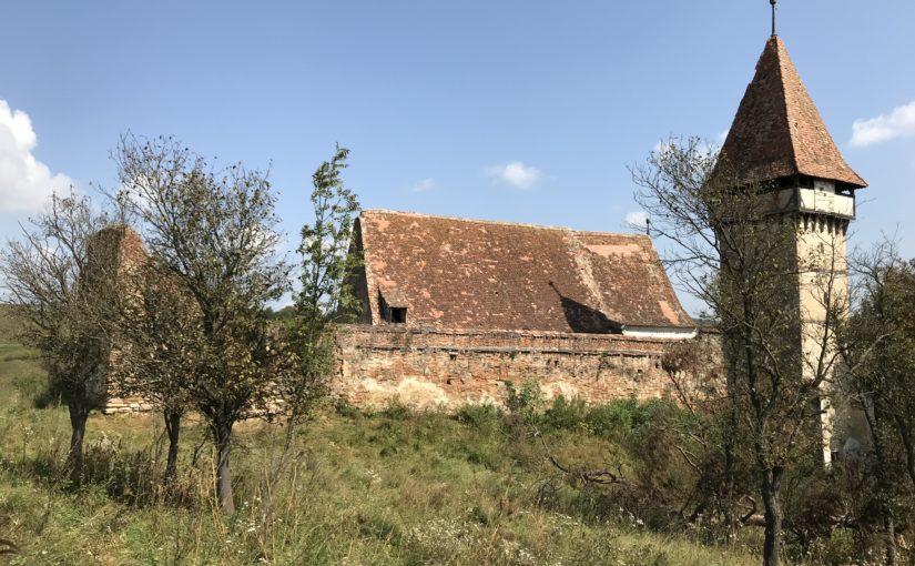 Acțiune voluntară de curățare a Bisericii Fortificate din Pelișor